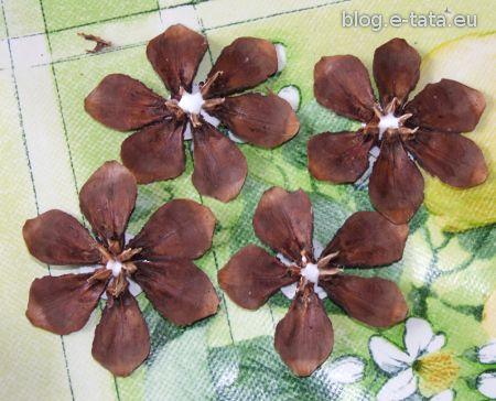 Kwiatki sklejone z płatków szyszek
