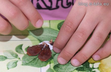 Sklejanie kwiatka z płatków szyszek