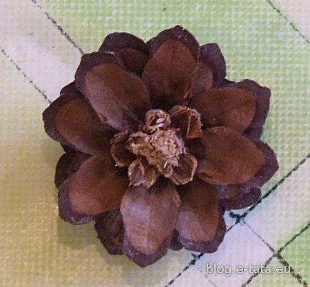 Szyszka - kwiatek