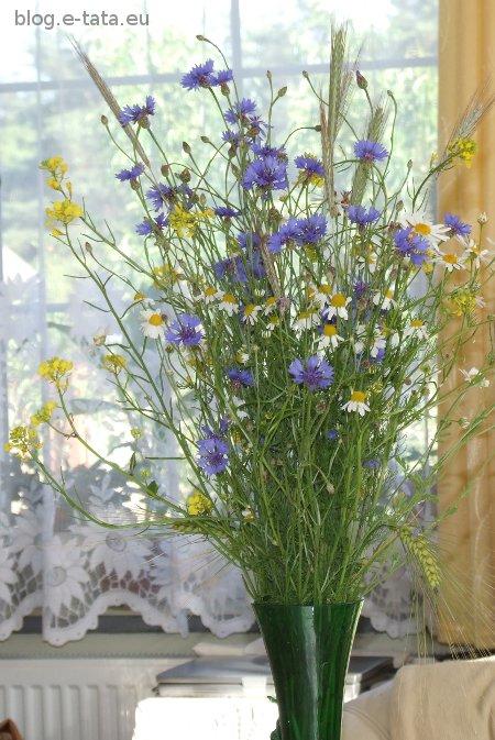 Bukiet polnych kwiatów dla taty