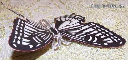 Motyl z papieru, zrobiony przez dzieci