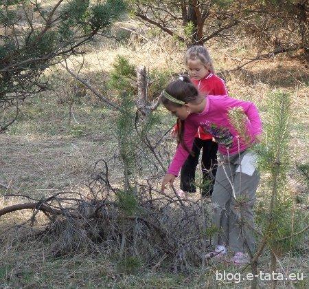 Zabawa dla dzieci, w poszukiwanie skarbów